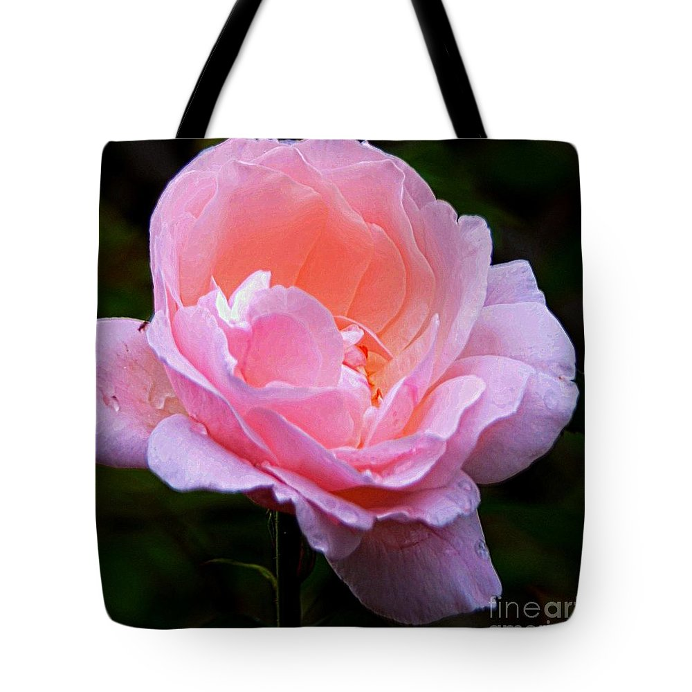 #pink Tote Bag featuring the photograph Pretty Pink Rose by Kathleen Struckle