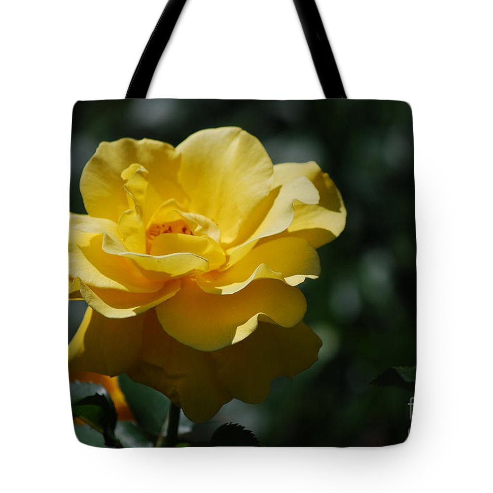 Yellow Rose Tote Bag featuring the photograph Pretty Yellow Rose Blossom by DejaVu Designs