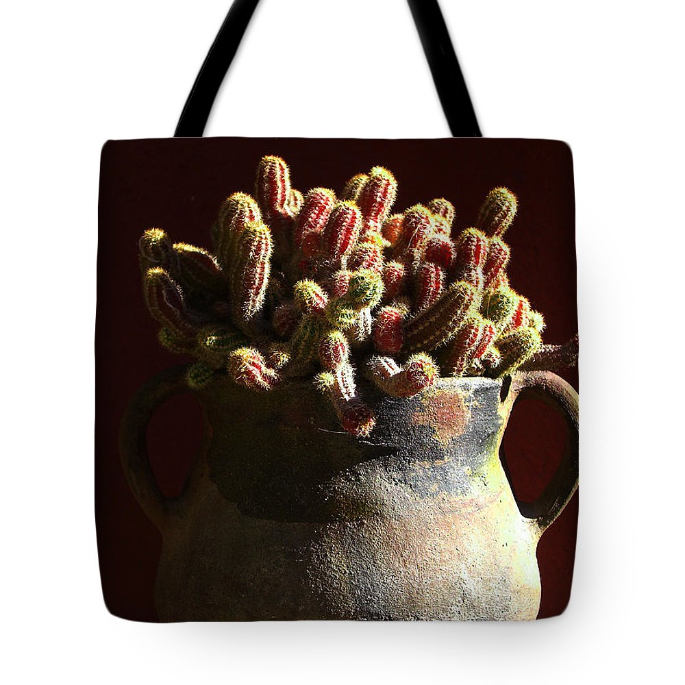 Chamaecereus Tote Bag featuring the photograph Prickly Padres by Xueling Zou