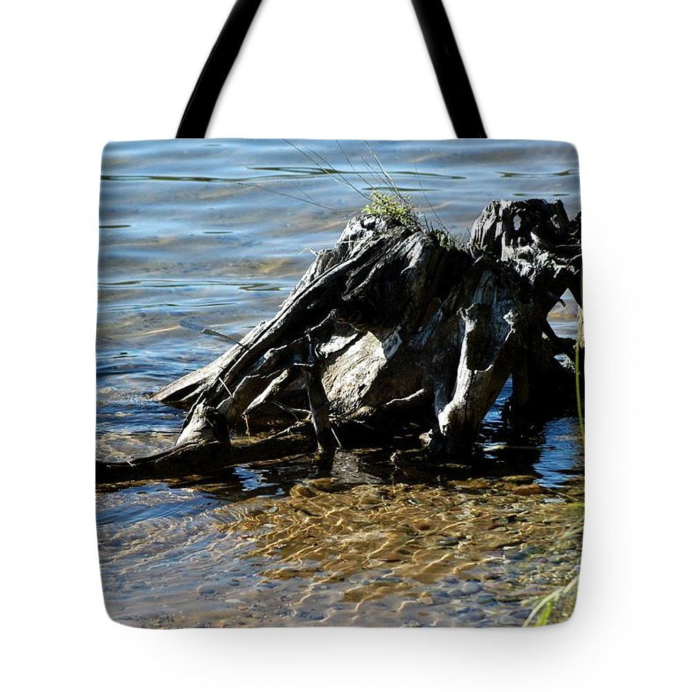 Atlanta Tote Bag featuring the photograph Primordial by Joseph Yarbrough