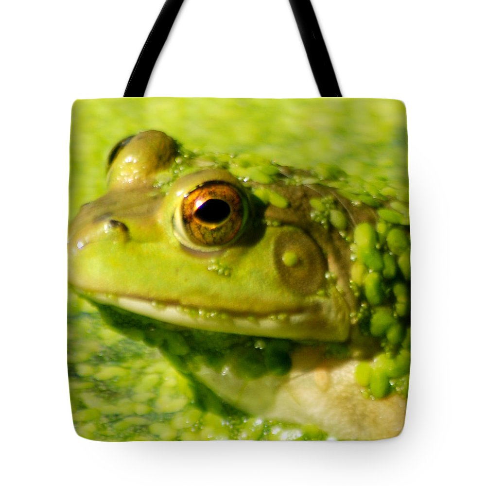 Green Algae Tote Bag featuring the photograph Profiling Frog by Optical Playground By MP Ray