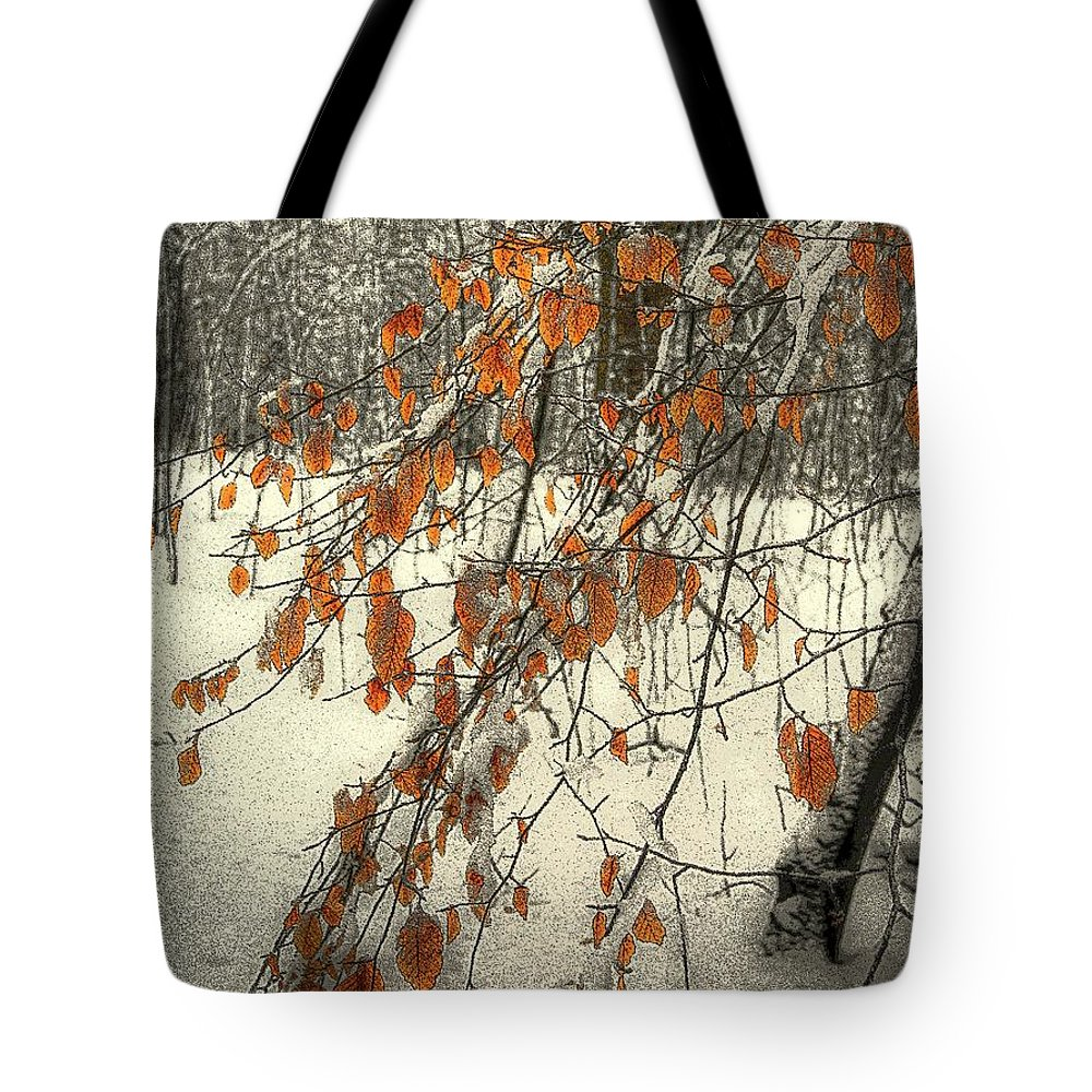 New York Tote Bag featuring the photograph Prospect Park Winter Scene by Jeff Watts
