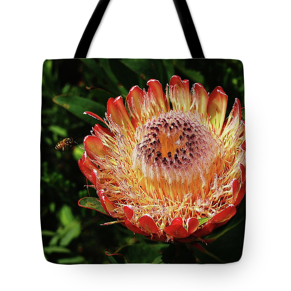 Protea Tote Bag featuring the photograph Protea Flower 2 by Xueling Zou