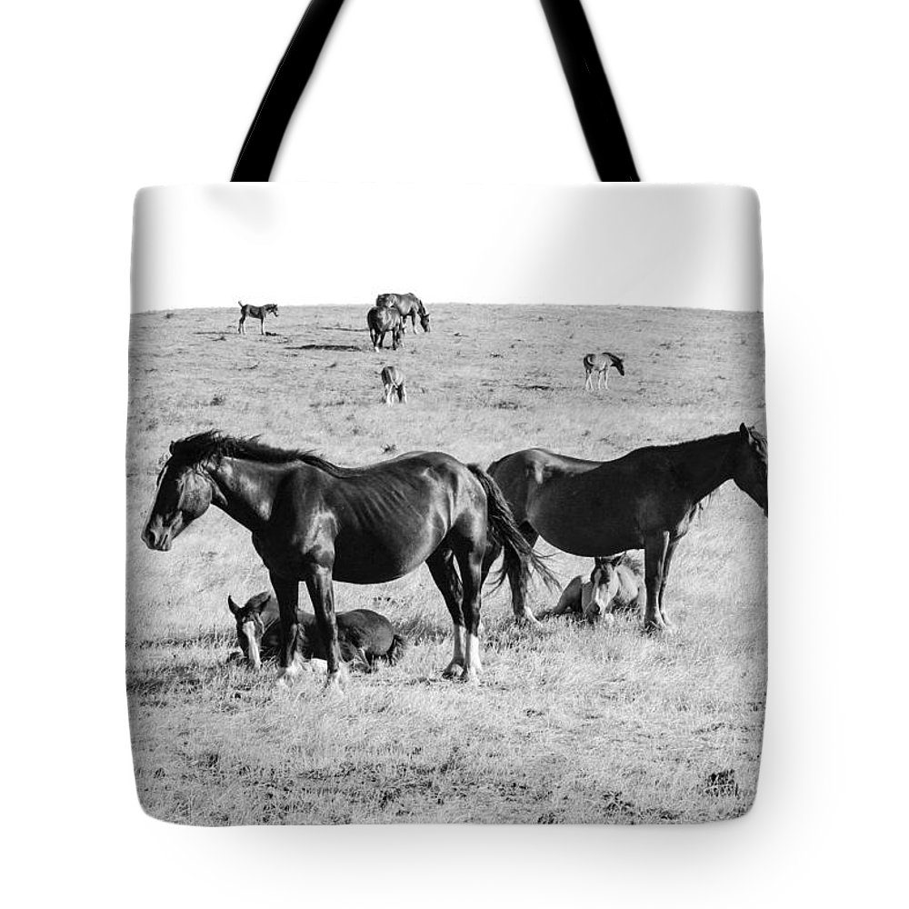 Assisi Tote Bag featuring the photograph Protective Mothers by Sonny Marcyan