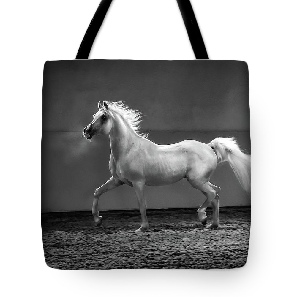 Horse Tote Bag featuring the photograph Proud Arabian Horse - Stallion In by Kerrick