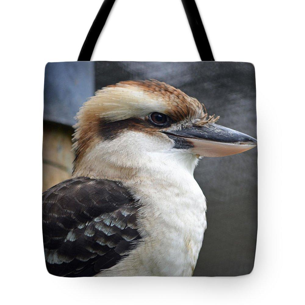 Kookaburra Tote Bag featuring the photograph Proud Kookaburra by Richard Bryce and Family
