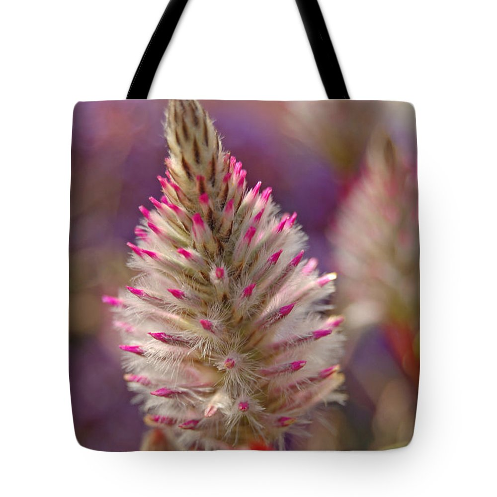 Ptilotus Tote Bag featuring the photograph Ptilotus by Jean Booth