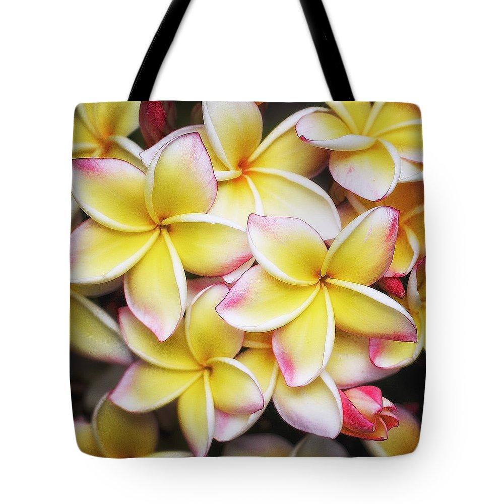 Plumeria Tote Bag featuring the photograph Pua Melia by Jade Moon