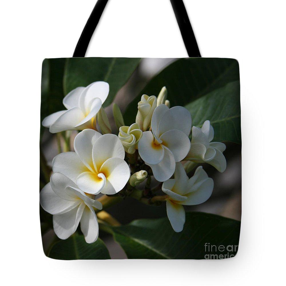 Aloha Tote Bag featuring the photograph Pua Melia Na Puakea Onaona Tropical Plumeria by Sharon Mau