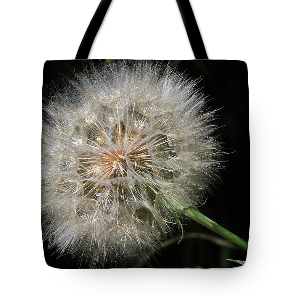 Flower Tote Bag featuring the photograph Puff And Your Gone by Donna Kennedy