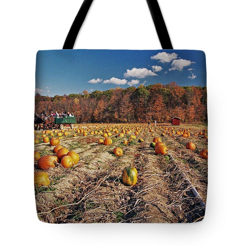 Pumpkin Tote Bag featuring the photograph Pumpkin Field by Allen Beatty