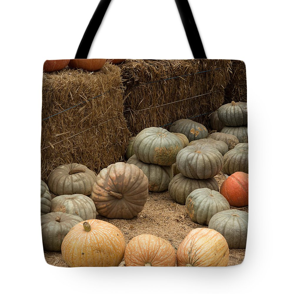 Pumpkin Tote Bag featuring the photograph Pumpkin Patch by Suzanne Luft