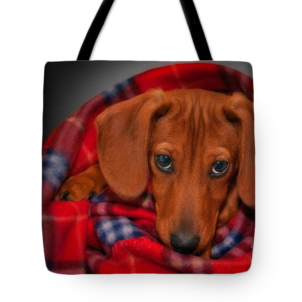 Puppy Tote Bag featuring the photograph Puppy Love by Susan Candelario