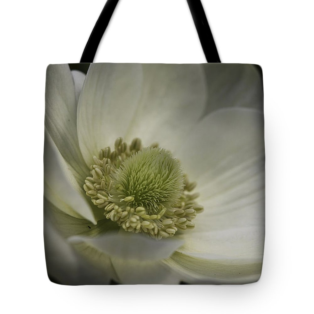 Flower Tote Bag featuring the photograph Pureness In White by Deborah Benoit