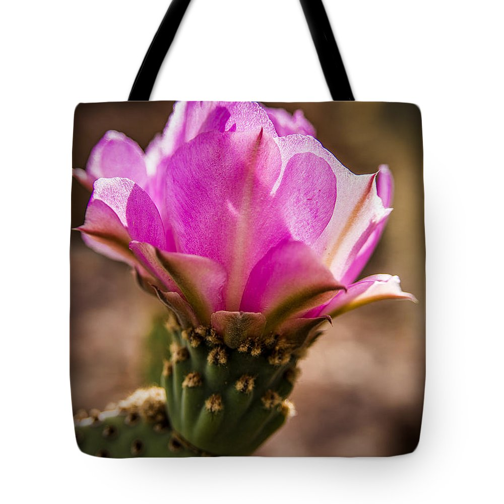 Cactus Flower Tote Bag featuring the photograph Purple Cactus Flower by Onyonet Photo Studios