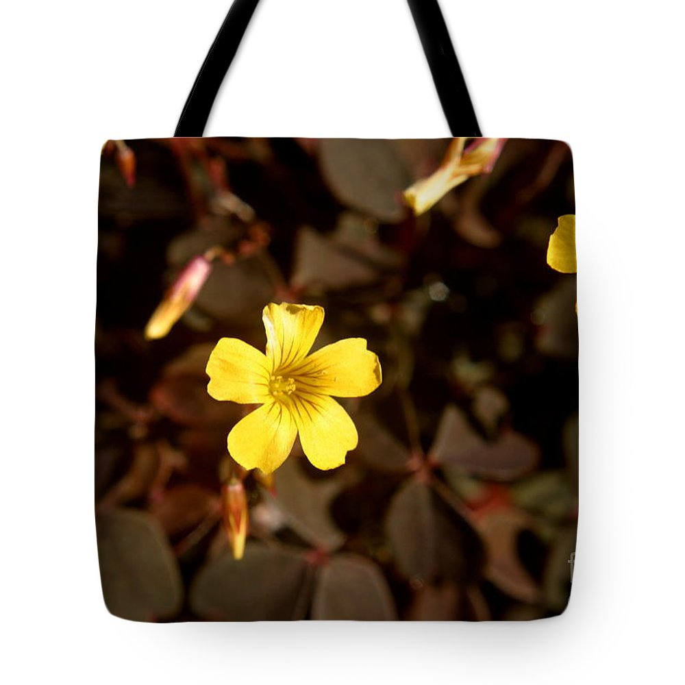 Purple clover yellow flower tote bag for sale by kenny glotfelty clover tote bag featuring the photograph purple clover yellow flower by kenny glotfelty mightylinksfo