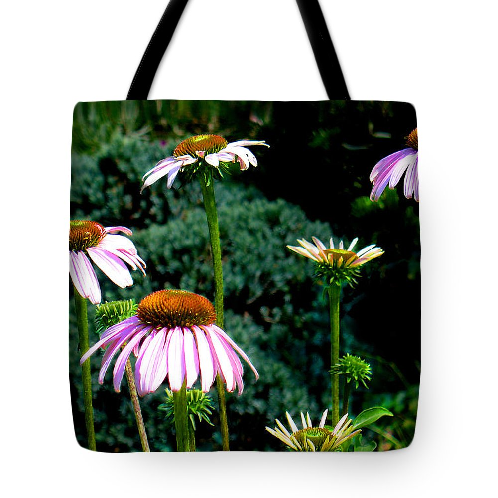 Cone Flowers Tote Bag featuring the photograph Purple Cone Flowers by Steve Karol