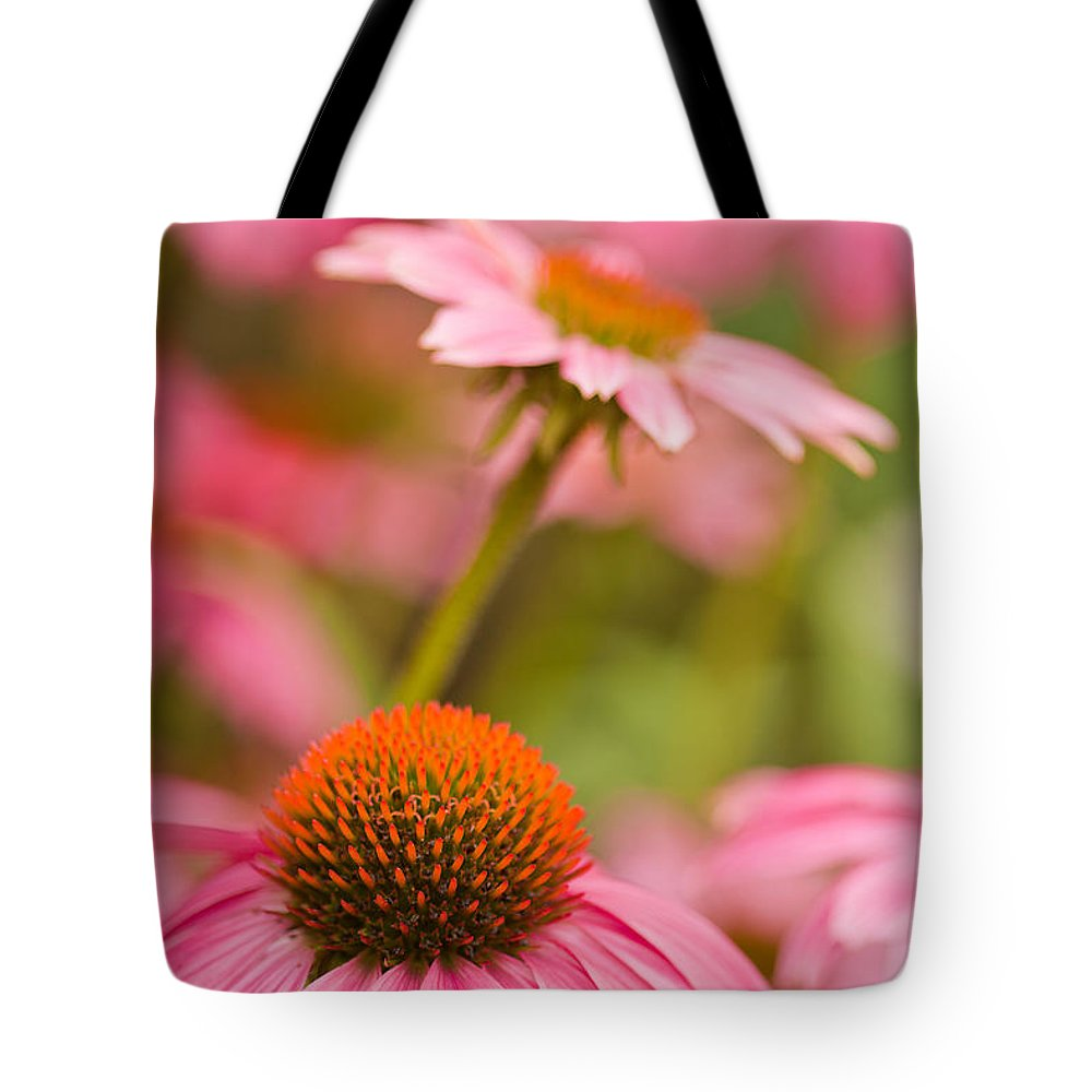 Coneflowers Tote Bag featuring the photograph Purple Cones by Lindley Johnson