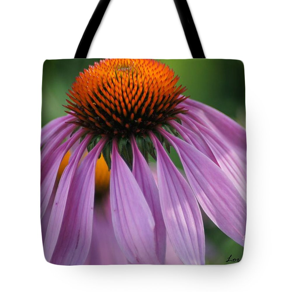 Flowers Tote Bag featuring the photograph Purple Cornflower by Lorelle Gromus