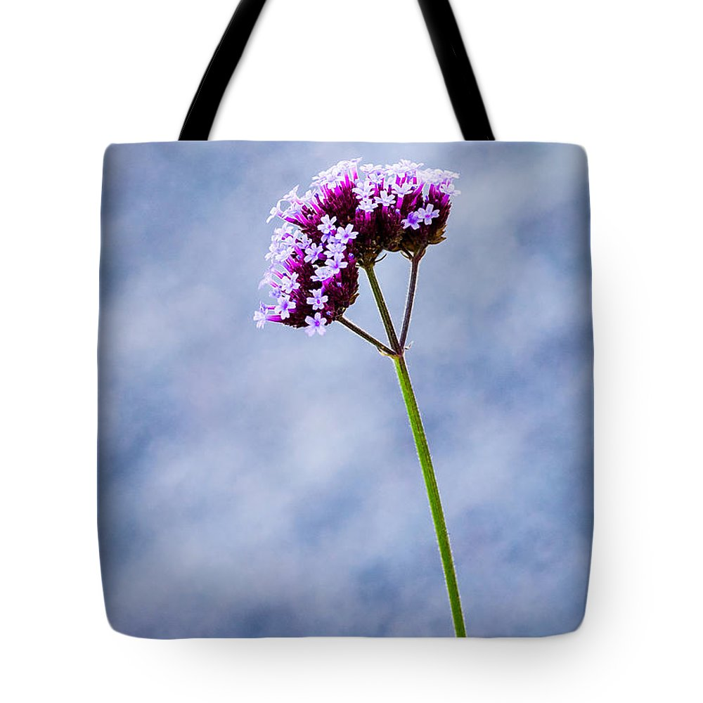 Art Tote Bag featuring the photograph Purple Flower by Alexander Senin