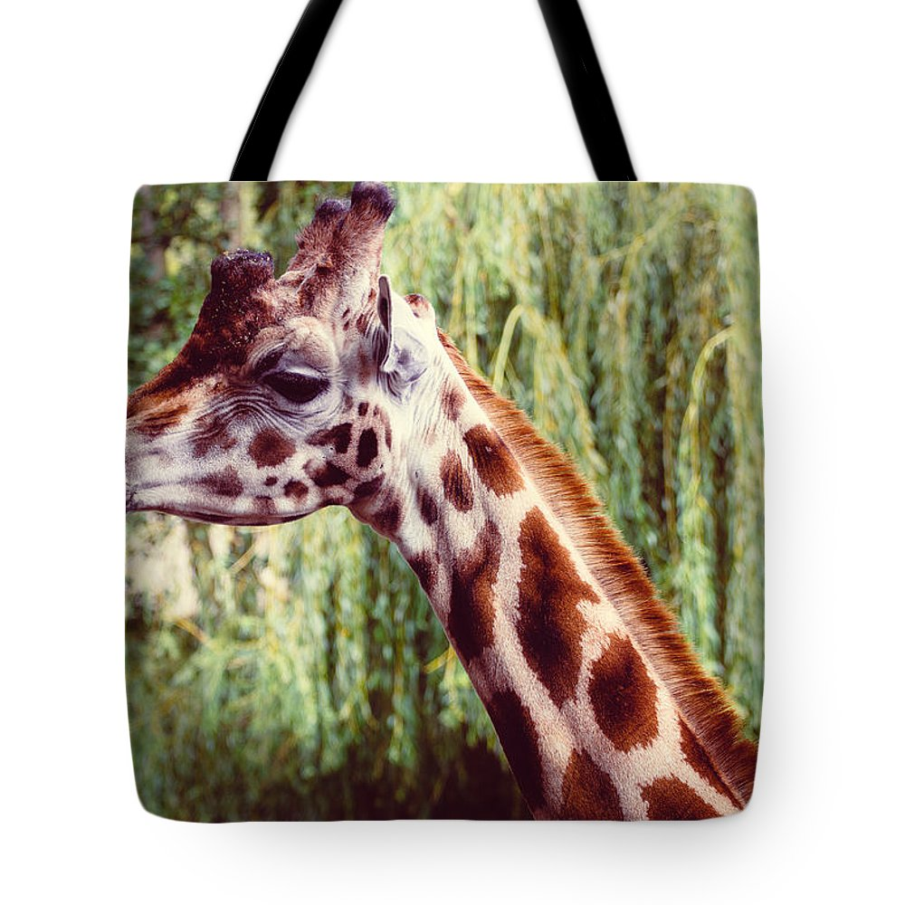 Giraffe Tote Bag featuring the photograph Purple Giraffe by Pati Photography
