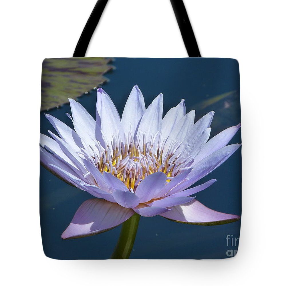 Flower Tote Bag featuring the photograph Purple Glory by Marguerita Tan