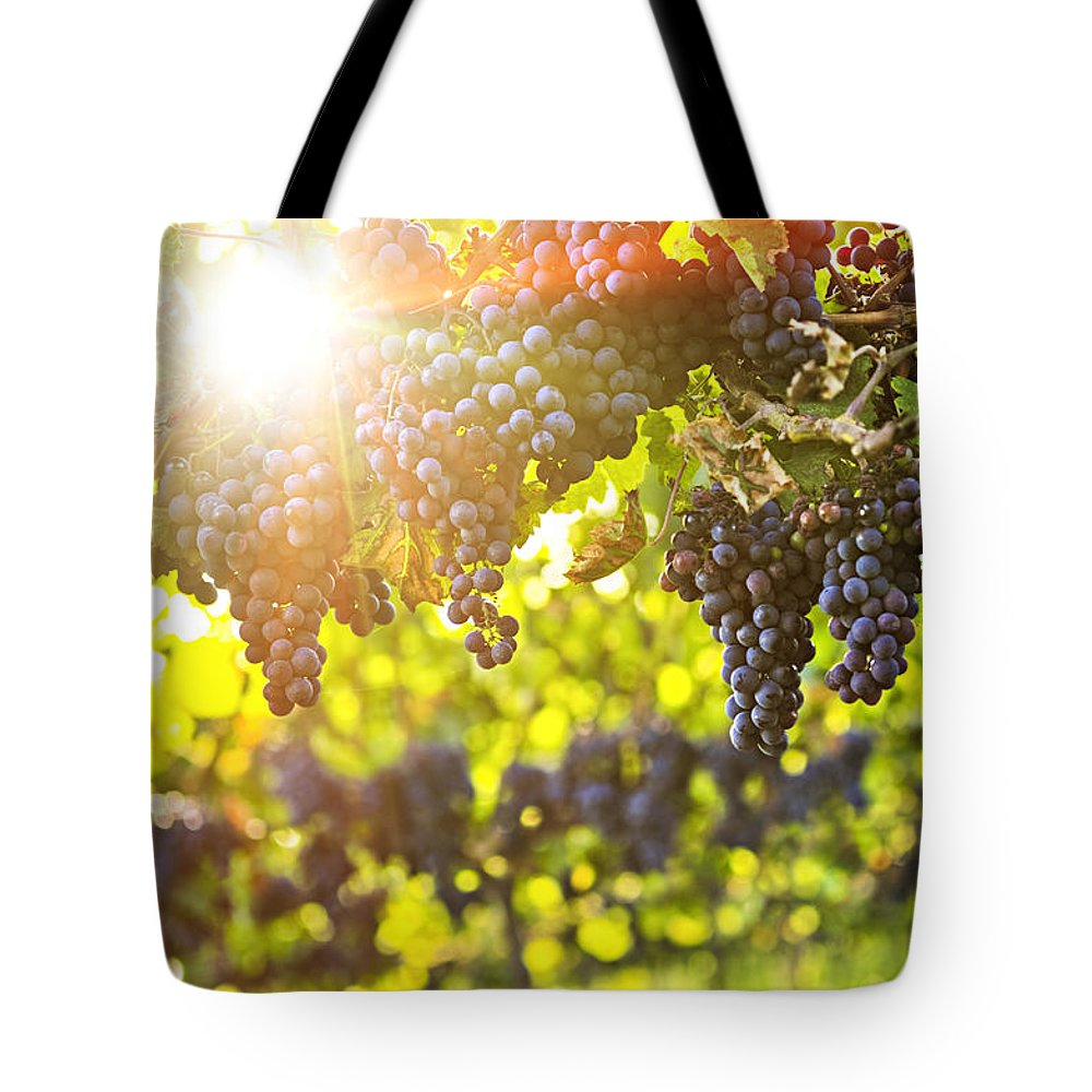 Red Tote Bag featuring the photograph Purple Grapes In Sunshine by Elena Elisseeva