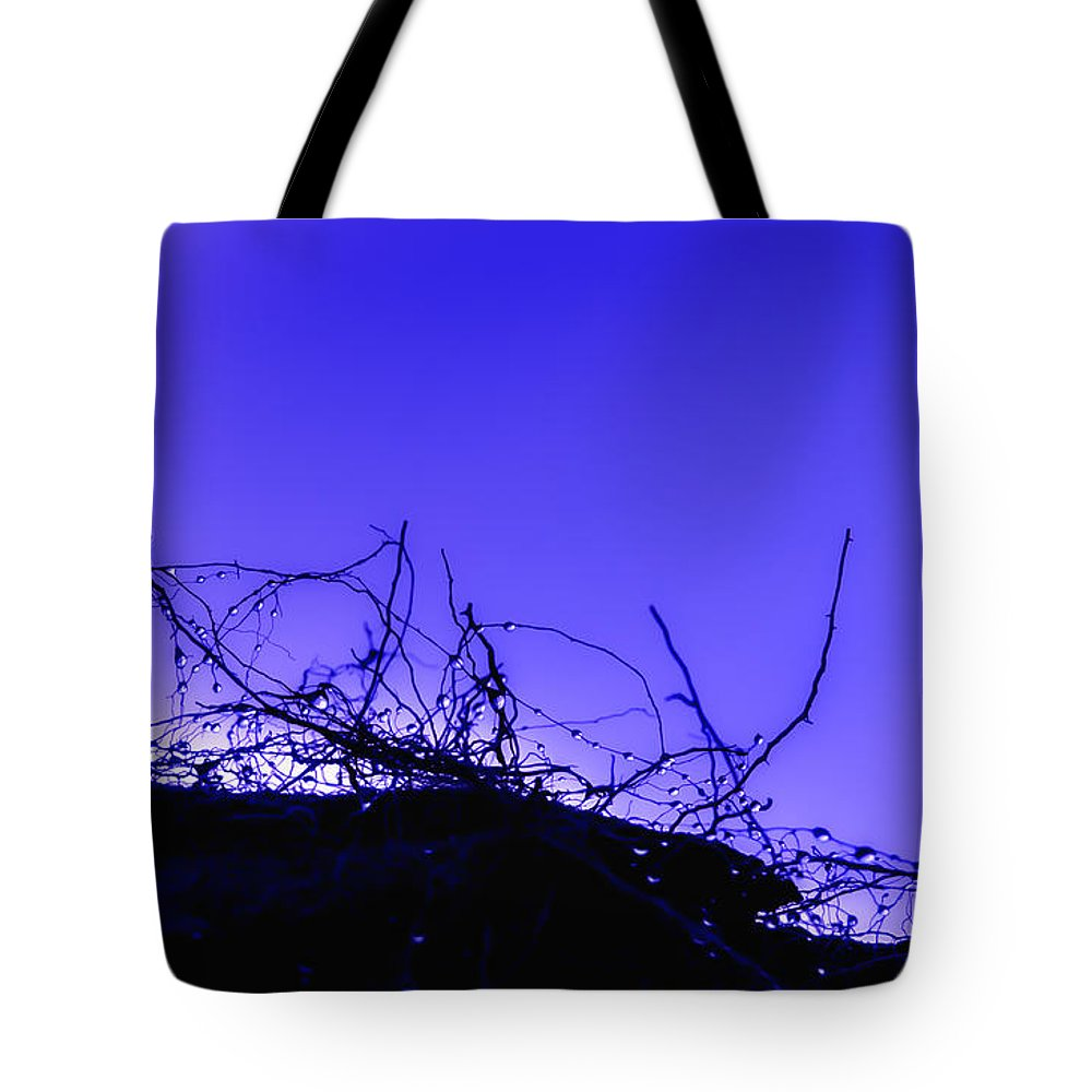 Purple Tote Bag featuring the photograph Purple Haze by Alex Hiemstra