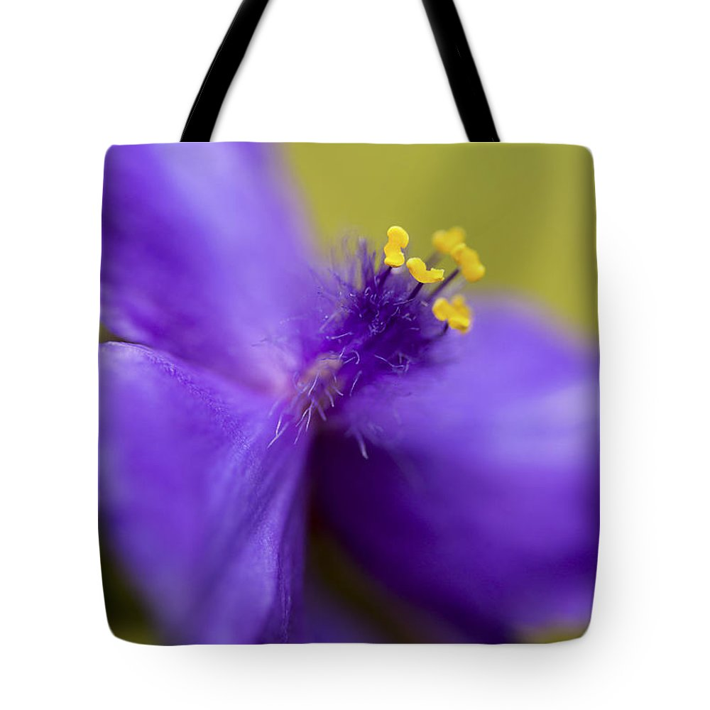 Floral Tote Bag featuring the photograph Purple Haze by Caitlyn Grasso