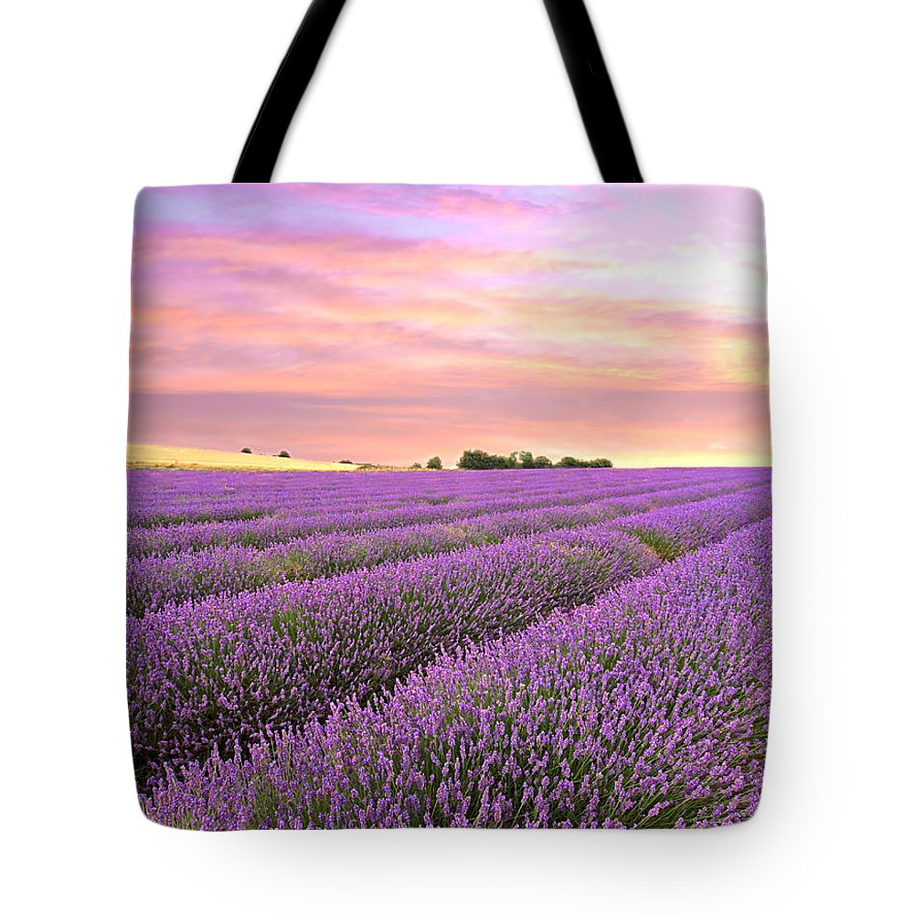 Purple Flowers Tote Bag featuring the photograph Purple Haze - Lavender Field At Sunrise by Gill Billington