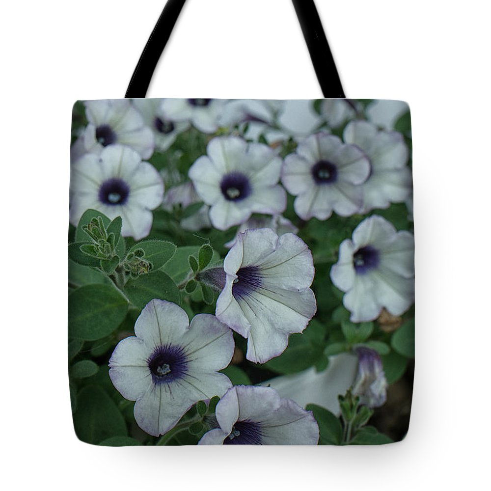 Geraniums Purple Heart Tote Bag featuring the photograph Purple Heart by Brothers Beerens