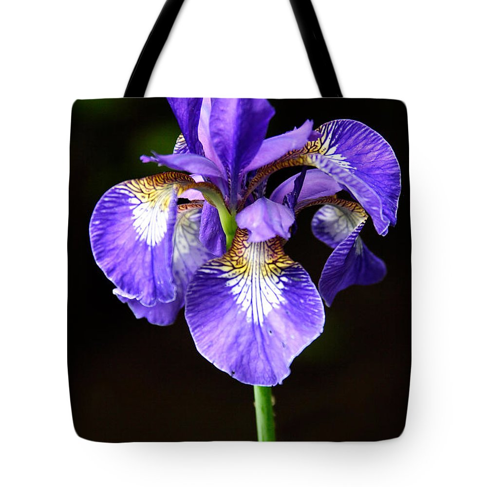 3scape Tote Bag featuring the photograph Purple Iris by Adam Romanowicz