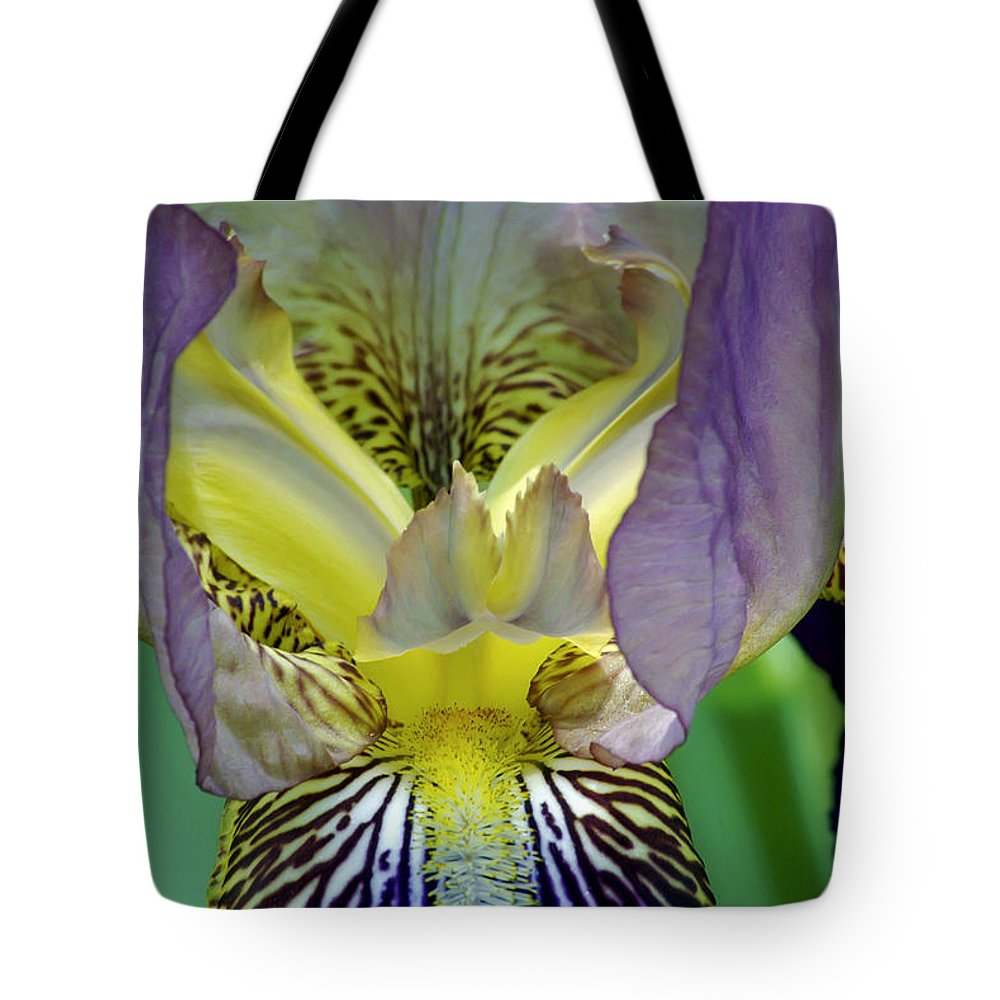 2d Tote Bag featuring the photograph Purple Iris by Brian Wallace