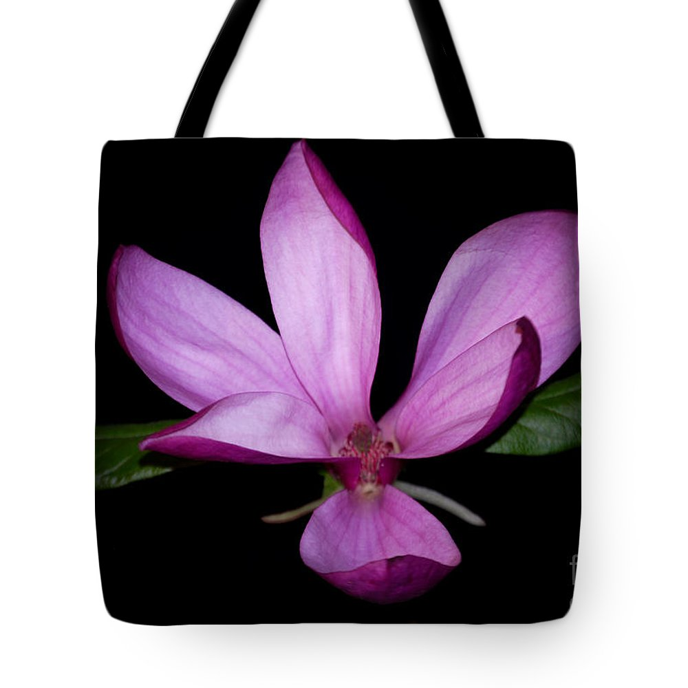 Purple Tote Bag featuring the photograph Purple Magnolia by Nancy Bradley