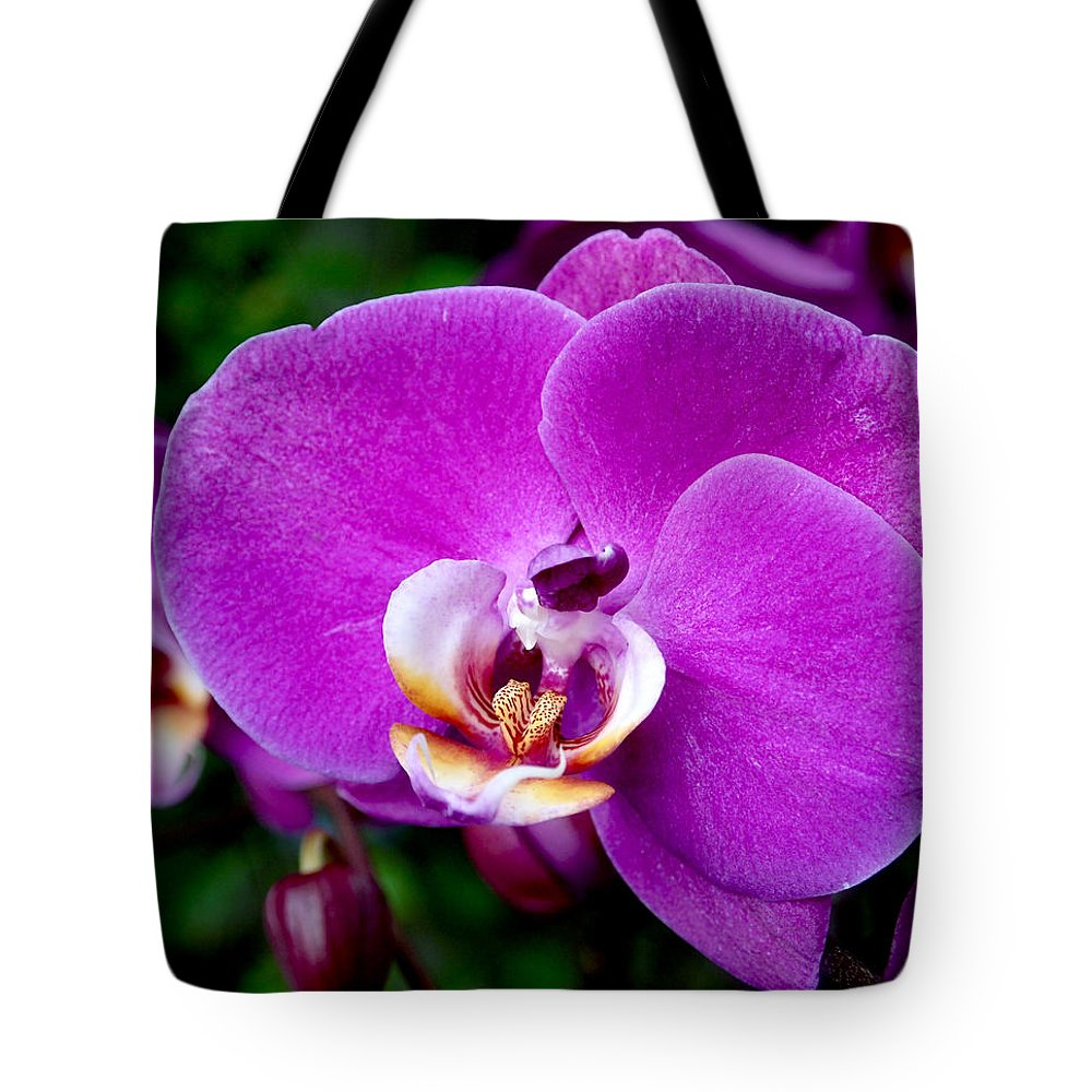 Orchid Tote Bag featuring the photograph Purple Orchid by Rona Black
