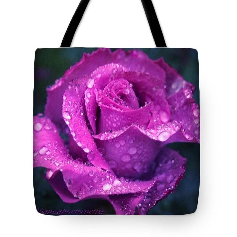 Purple Rose And Raindrops Tote Bag featuring the photograph Purple Rose And Raindrops by Anna Porter
