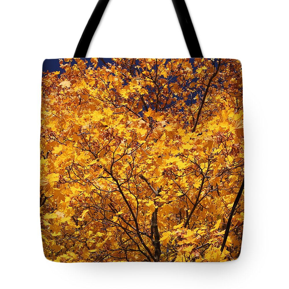 Maple Tote Bag featuring the photograph Purple Sky by Mary Bedy