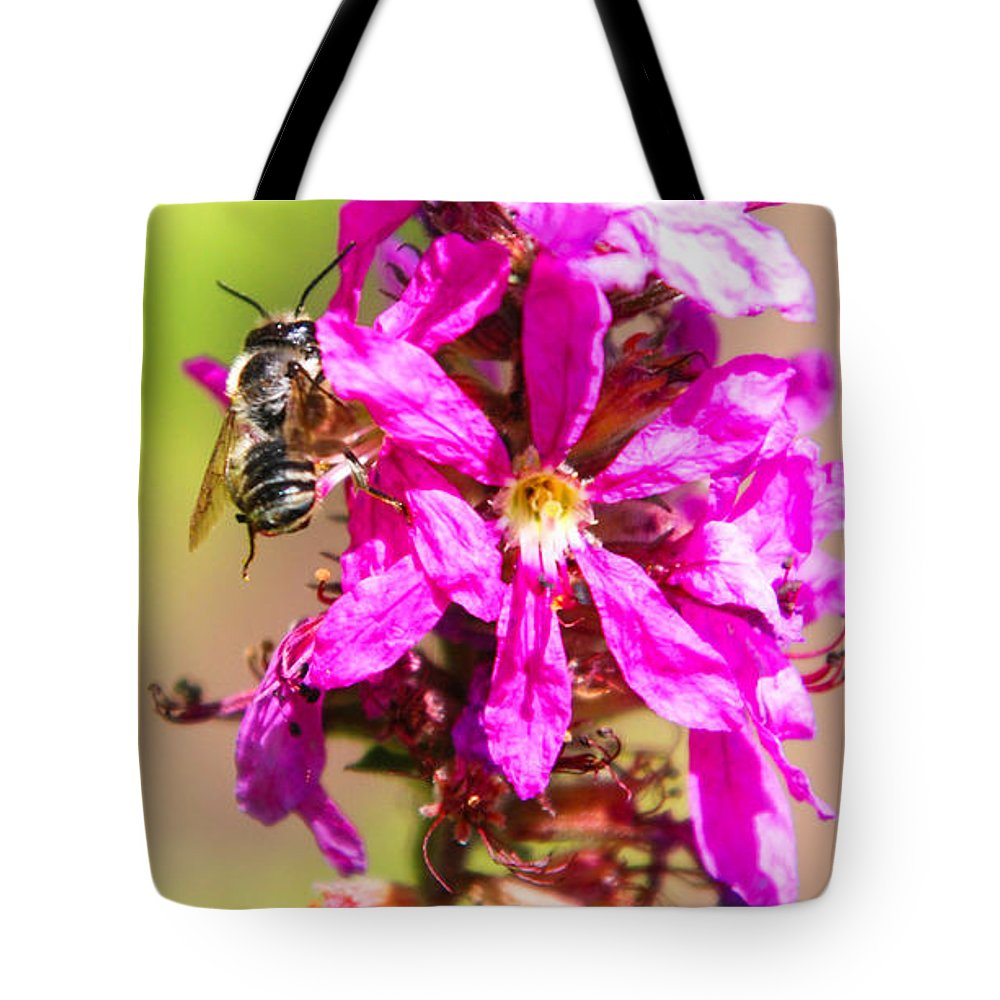Purple Wild Flower Tote Bag featuring the photograph Purple Wild Flower by Optical Playground By MP Ray