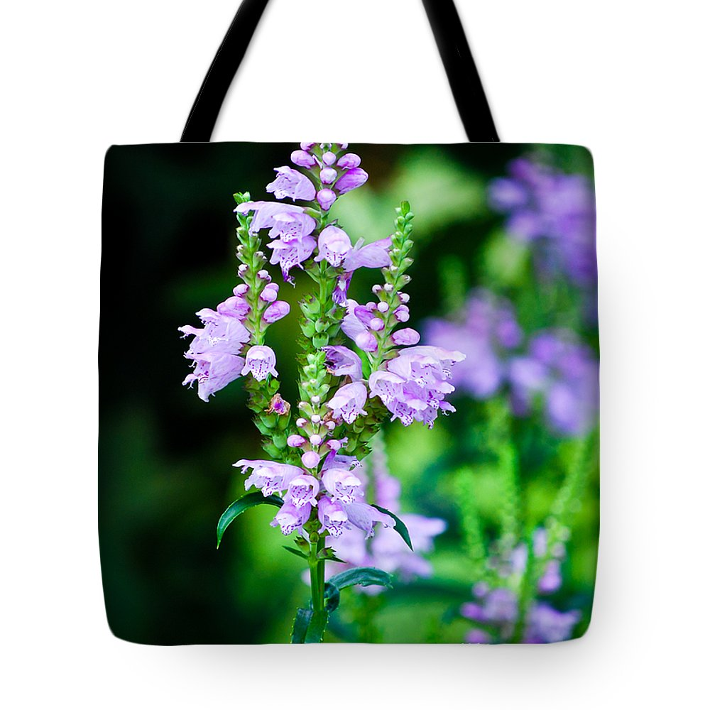Wisconsin Flower Tote Bag featuring the photograph Purples by Christi Kraft
