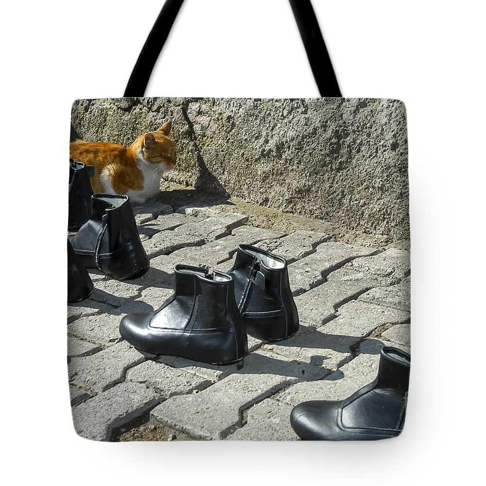 Street Market Markets Cat Cats Boot Boots Streets City Cities Cityscape Cityscapes Safranbolu Turkey Odds And Ends Animal Animals Creature Creatures Shoe Shoes Tote Bag featuring the photograph Puss And Boots by Bob Phillips