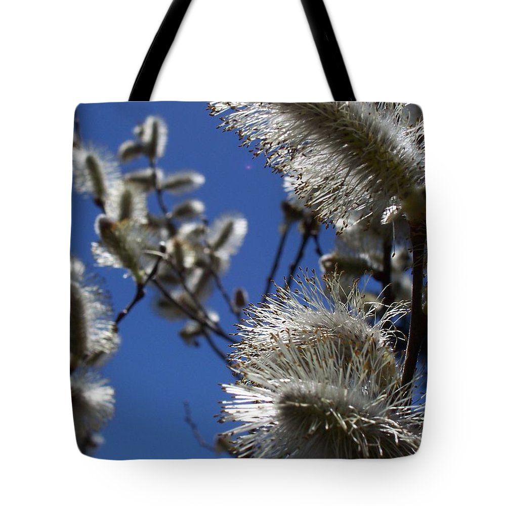 Nature Tote Bag featuring the photograph Pussywillow by Maria Manna
