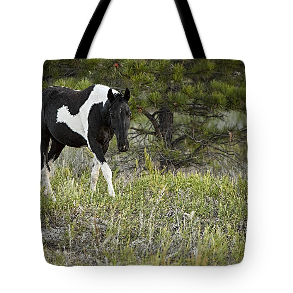 Horse Tote Bag featuring the photograph Puzzle Piece by Jack Milchanowski