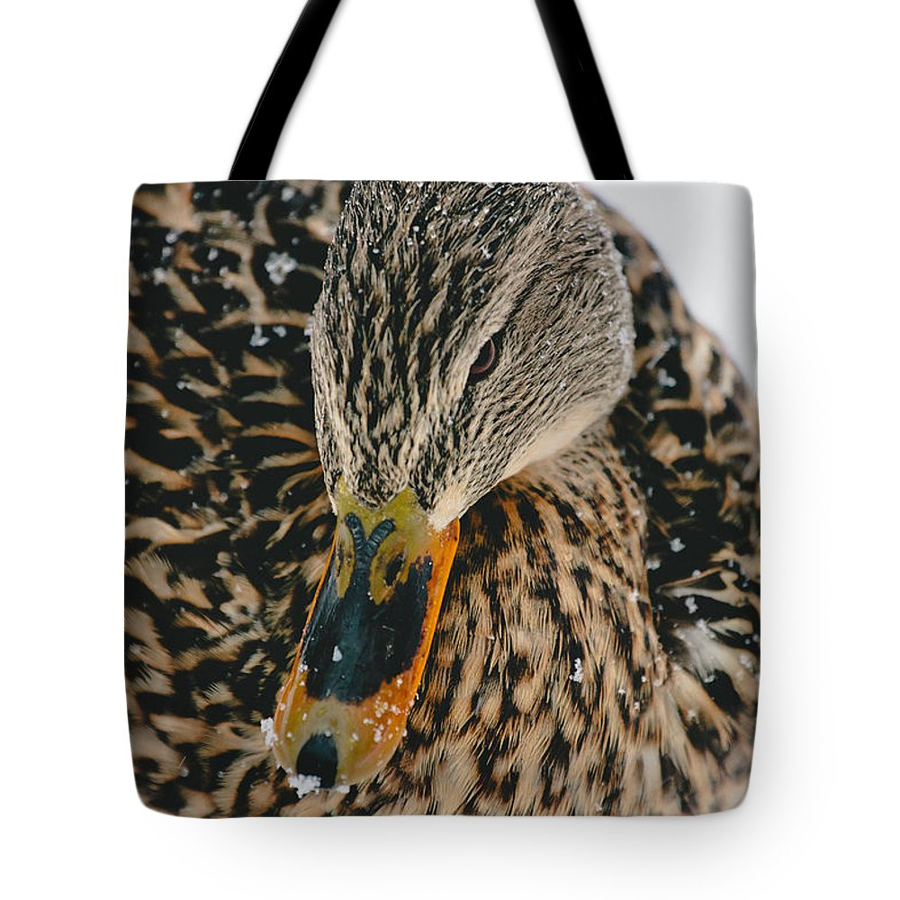 Ducks Tote Bag featuring the photograph Quack by Pati Photography