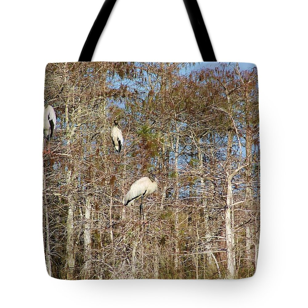 Quartet Tote Bag featuring the photograph Quartet In The Trees by Chuck Hicks