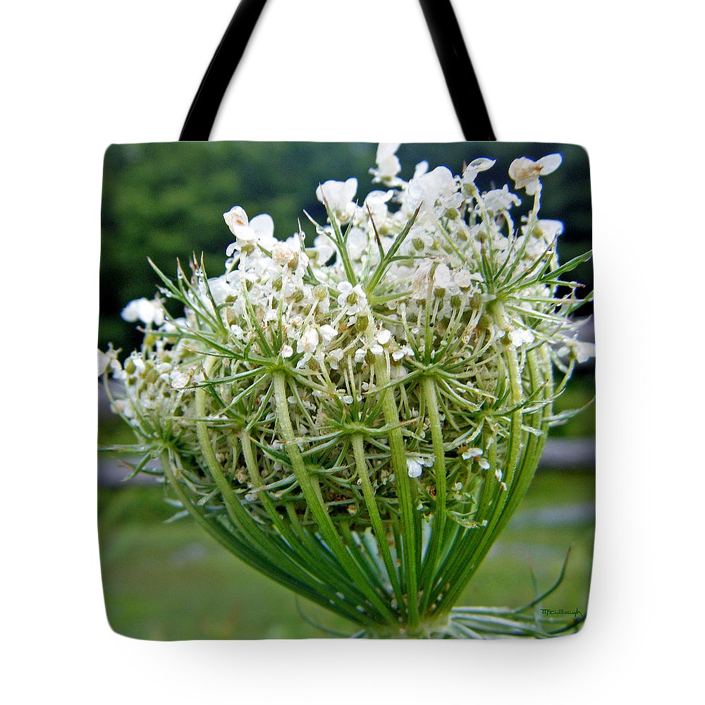 Duane Mccullough Tote Bag featuring the photograph Queen Anne's Lace Flower Unfolded by Duane McCullough