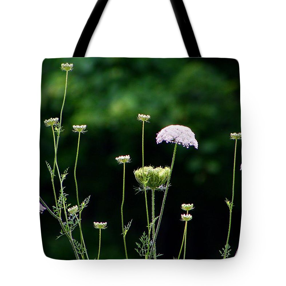 Queen Anne's Lace Tote Bag featuring the photograph Queen Anne's Lace by Kathryn Meyer