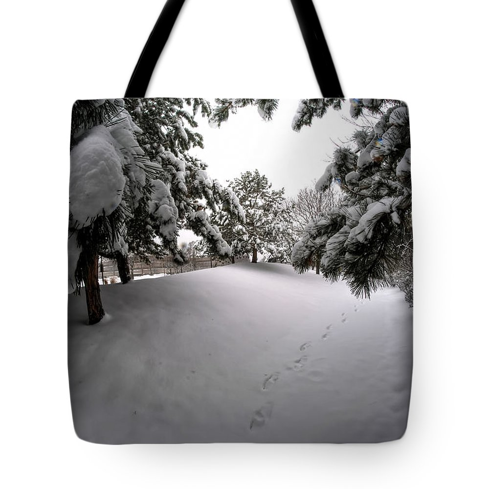 Buffalo Tote Bag featuring the photograph Queen City Winter Wonderland After The Storm Series 0030 by Michael Frank Jr