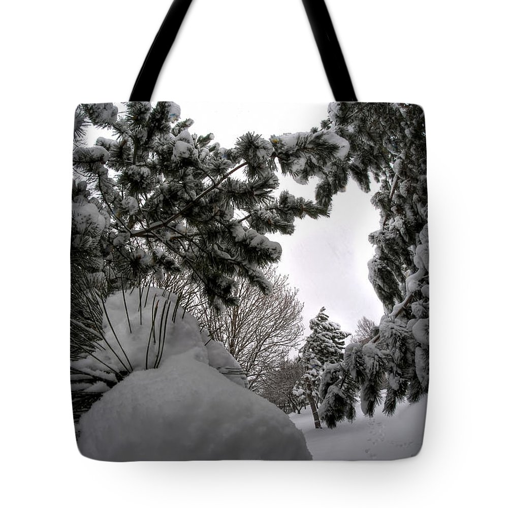 Buffalo Tote Bag featuring the photograph Queen City Winter Wonderland After The Storm Series 0031 by Michael Frank Jr