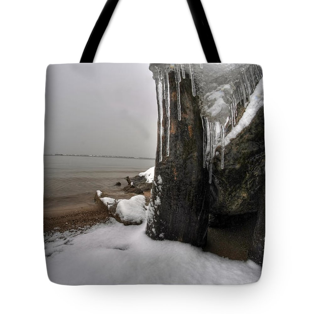 Buffalo Tote Bag featuring the photograph Queen City Winter Wonderland After The Storm Series 0037 by Michael Frank Jr