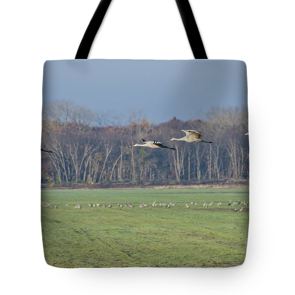 Sandhill Tote Bag featuring the photograph Quidditch by Scott Wood